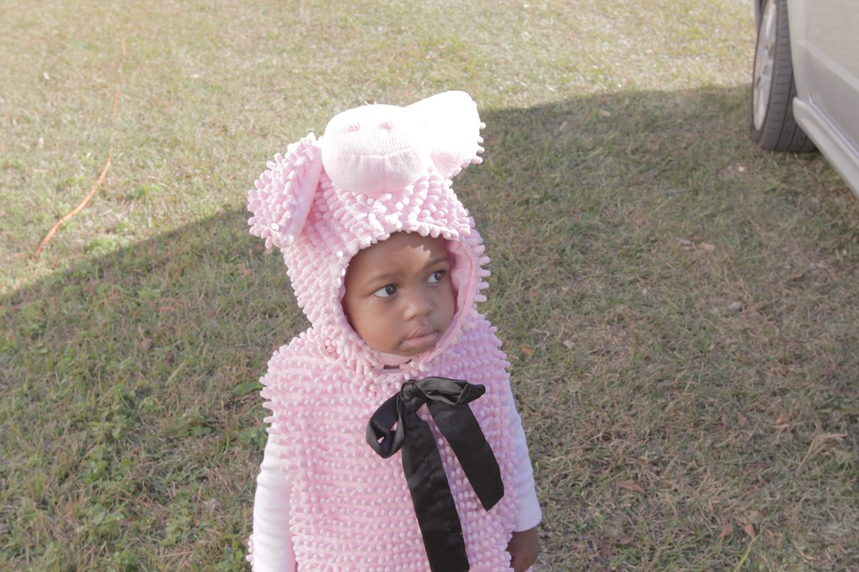 toddler in a pig custome